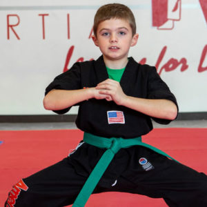 Amerikick martial arts karate classes youth