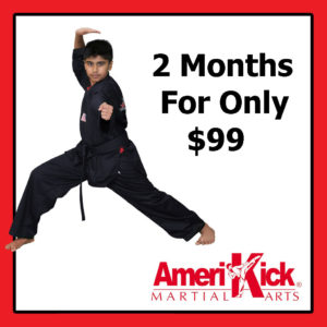 Amerikick martial arts karate classes 2 months offer