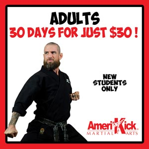 Amerikick martial arts karate classes adults offer