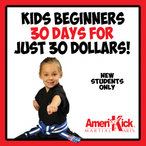 Amerikick martial arts karate classes beginners offer
